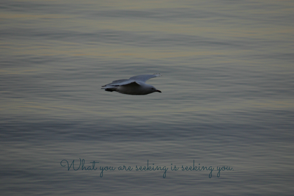 meditation wallpaper - What you are seeking