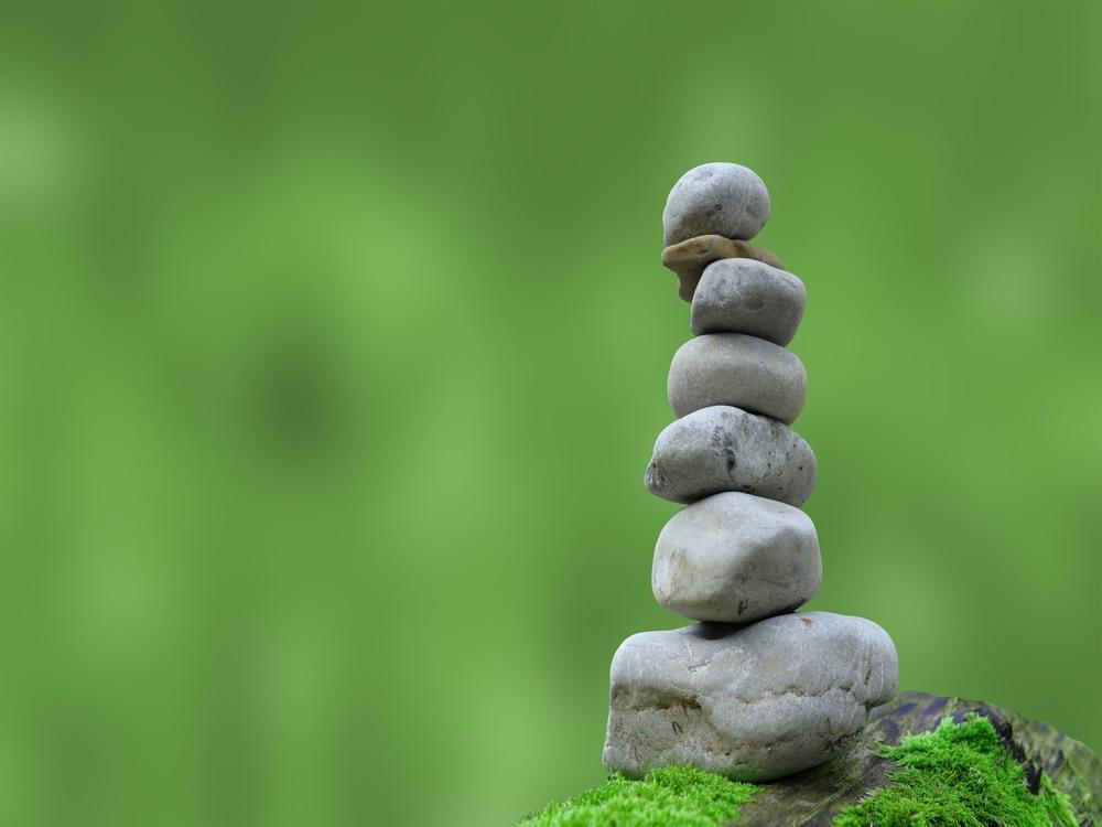 meditation facts